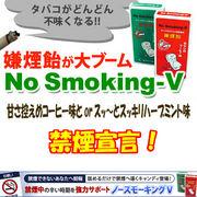 ノースモーキングV(10粒/ハーブミント味)