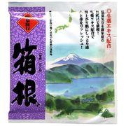 薬用入浴剤 温泉旅行 箱根(神奈川県)/日本製  sangobath