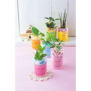 【ノベルティ】デザートカップ/ミニ観葉植物