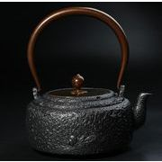 鉄器 急須 伝統工芸 手作り 鉄分補給 鉄瓶 SY-016
