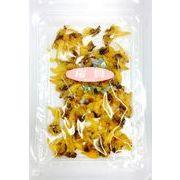 ■小ロット■安定供給可能になりました♪人気の桜貝が戻ってきました!【桜貝】