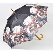 【お仕入れ10000円で送料無料♪♪】【ジャンプ傘】CATミュージック ネコ雑貨