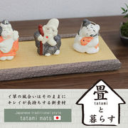 畳と暮らす/ミニ畳【日本製/畳/和雑貨/和風/和物/日本】