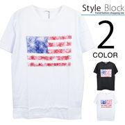 ペイズリー星条旗プリントクルーネックTシャツ/sb-255695
