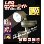 LEDセンサーライトM1W-SLED