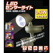 LEDセンサーライトM03W-SLED