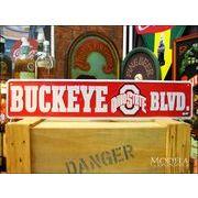 �A�����J���u���L�Ŕ� Buckeye blvd/�I�n�C�I�ʂ�