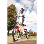 【代引不可】 スウィツスポート 20型折りたたみ自転車(6段変速) 本体