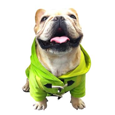 犬 服 コート