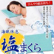 一年中使える枕氷枕の代用にも♪ひんやり気持ちいい◇ 塩まくら