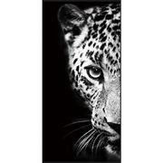 …Monochrome【Leopard】