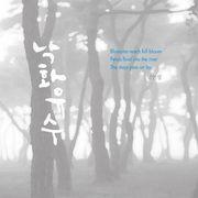 韓国音楽 ナム・インソン - 落花流水