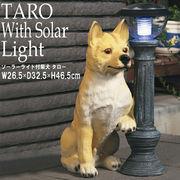 【直送可/送料無料】ご帰宅を歓迎♪可愛いソーラーライト付柴犬 「タロー」