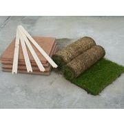ちょこっと芝生 40 【天然芝100%・自然素材・簡単設置・お手入れ簡単・ペットの遊び場にも】キット付