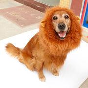 ドロップシッピングOK☆中~大型犬用ライオンマフラー ライオンウィッグ フリーサイズ(70x40cm)