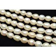 淡水真珠パール ライス ホワイト 6~7mm 1連(約35cm)_R1922-6/A4-4