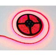 LEDテープ 黒ベース 5m 600連SMD 正面発光 12V 防水 レッド