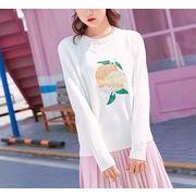 ニット 刺繍 カットソー ラウンドネック 韓国風 ゆったり 全2色 r3001342
