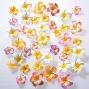 ★アウトレット商品!★お買い得!プルメリア(スポンジ造花)  カラーmix 50個アソート