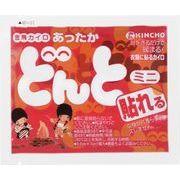 貼れるどんとミニA10P 【 大日本除虫菊(金鳥) 】 【 カイロ 】