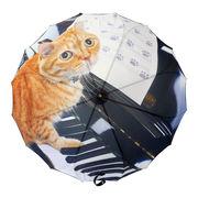 [60cm]傘 レディース 16本骨傘 サンフラワー骨 ジャンプ 猫(ネコ)