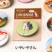 柴犬まるのコレクション缶バッジ :いやいやさん