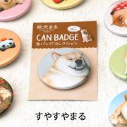 柴犬まるのコレクション缶バッジ: すやすやまる