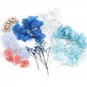 8種 花材 ハーバリウムに最適♪ 手詰めケース入り♪ 冬花材弁当セット《ブルーmix》【当店オリジナル企画】