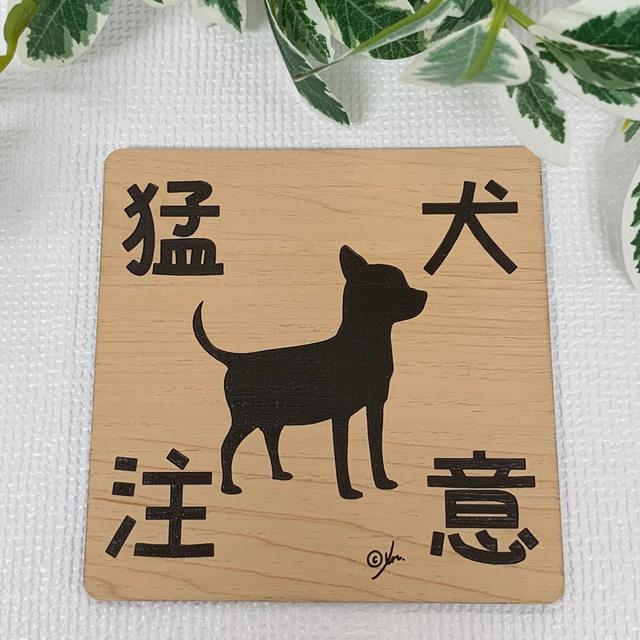 猛犬注意サインプレート(チワワ2)木目調アクリルプレート