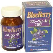 ミナミヘルシーフーズ  [ハーバルサプリ]ブルーベリー粒120
