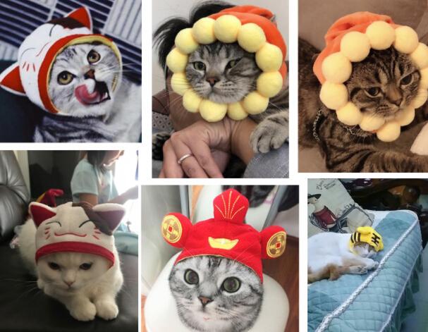 新作 ペット用品 猫 ペット用品 ペット帽子 コスプレ
