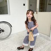 シャツ ズボン 2点セット 女の子 大人気 キッズ 韓国子供服 2020新作 SALE ファッション