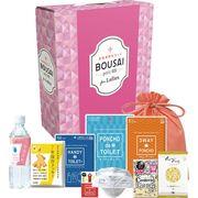 女性用防災セット BOUSAI petit BOX8467