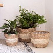 111#2021新作草編み植木鉢家居室内外植物植木鉢  9ZCLA1601
