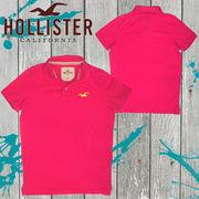 正規品【Hollister】ホリスター★メンズ★ロゴ★刺繍★カモメ★鹿の子素材★半袖★ポロシャツ ピンク