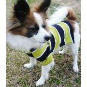 【即納】在庫処分 犬服 ボーダー Tシャツ 2カラー 6サイズ展開