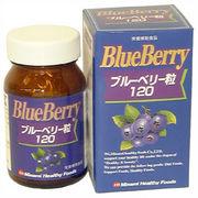 ブルーベリー粒120/ミナミヘルシーフーズ