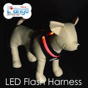 【L'ange】LED フラッシュ ハーネス S