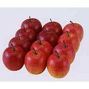 アップル 12個入り フルーツ オーナメント