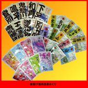 DM便送料無料!顧客直送可!入浴剤 日本全国温泉慕情癒し旅・29箇所/日本製 sangomail