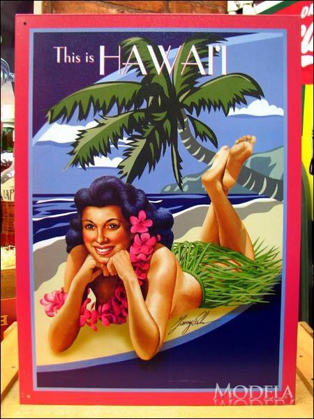 アメリカンブリキ看板 ここはハワイです