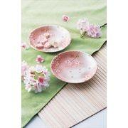 桜 中皿 2P 2枚セット /桜 さくら 和食器 小皿