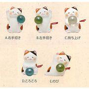 【ご紹介します!ほっこりかわいい縁起物! 福玉猫おみくじ(5種)】