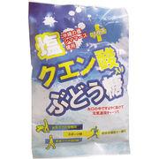 塩+クエン酸入り ぶどう糖 2g×20粒入