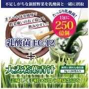 乳酸菌EC-12 プラス 大麦若葉青汁 3g×24包【日本製】