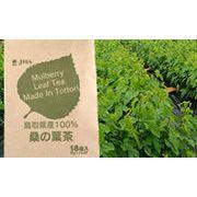 鳥取県産桑の葉茶(ティーバッグ)