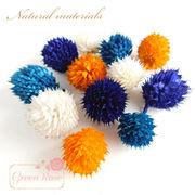 とげとげな植物素材♪10個♪全4色★花材/パーツ/材料/ドライフラワー/花材/F35