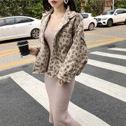 セット 秋服 女 新しいデザイン ルース 羊毛の ヒョウ アウターウェア 着やせ ニッテ
