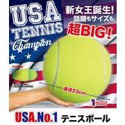 USA.No.1 テニスボール