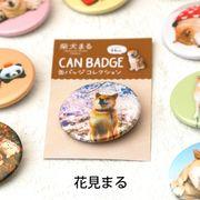 柴犬まるのコレクション缶バッジ :お花見まる